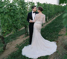 Wedding barolo-vineyard wedding